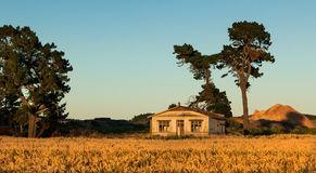 casa-campo-trigo